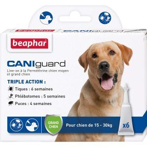 pipettes antiparasites grand chien